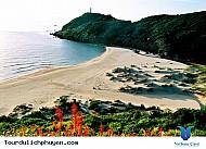 Bãi Gốc Phú Yên