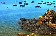 Gành Đá Đĩa, Phú Yên: hút mọi ánh nhìn nơi Du khách…!
