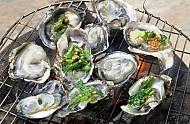 Hào Nướng Mỡ Hành Trên Biển Phú Yên