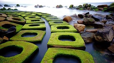Bãi Rêu Xanh quanh năm một màu tại Tuy Hòa - Phú Yên