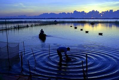 Đầm Ô Loan – Mộng mơ nơi Phú Yên