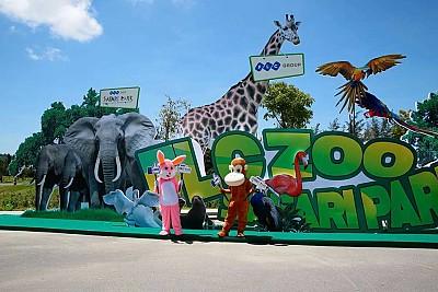 Safari Park - Điểm Đến Mới Nổi Đừng Bỏ Qua Khi Du Lịch Quy Nhơn