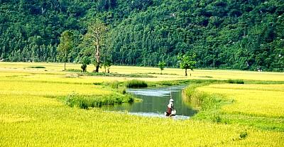 Trải Nghiệm Một Ngày Làm Nông Dân Tại Du Lịch Phú Yên