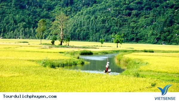 Du lịch hè hút khách tại Phú yên - Ảnh 4
