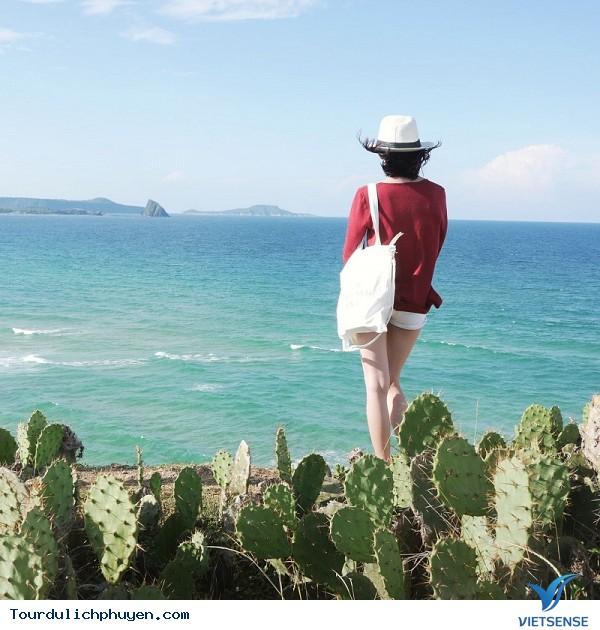 Du lịch hè hút khách tại Phú yên - Ảnh 1