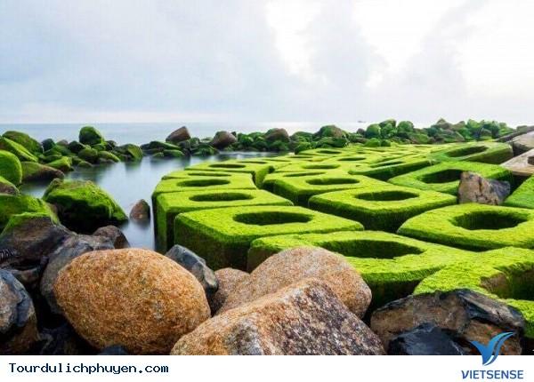 Du lịch Phú yên tự túc giá rẻ trong dịp hè - Ảnh 4