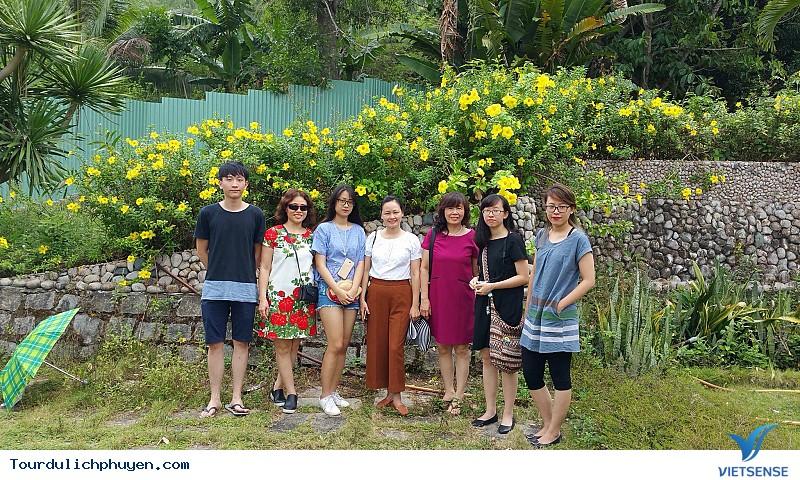 Tour du lịch 3 ngày 2 đêm Hà Nội Phú Yên - Ảnh 6
