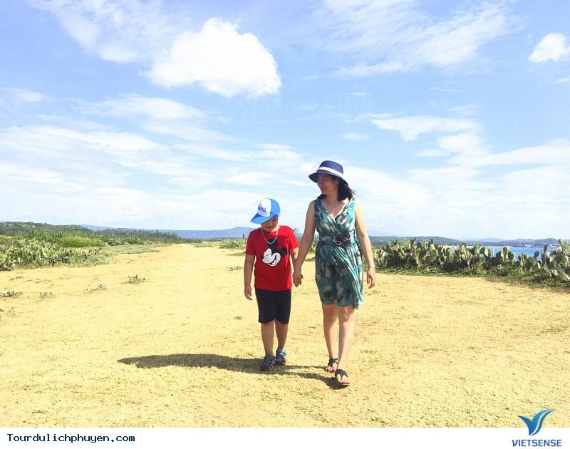 Tour du lịch Hà Nội - Phú Yên - Xứ Hoa Vàng Cỏ Xanh