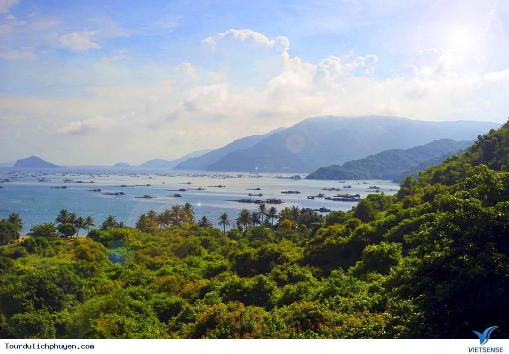 Du lịch Phú Yên – Khám Phá Vịnh Vũng Rô - Ảnh 5