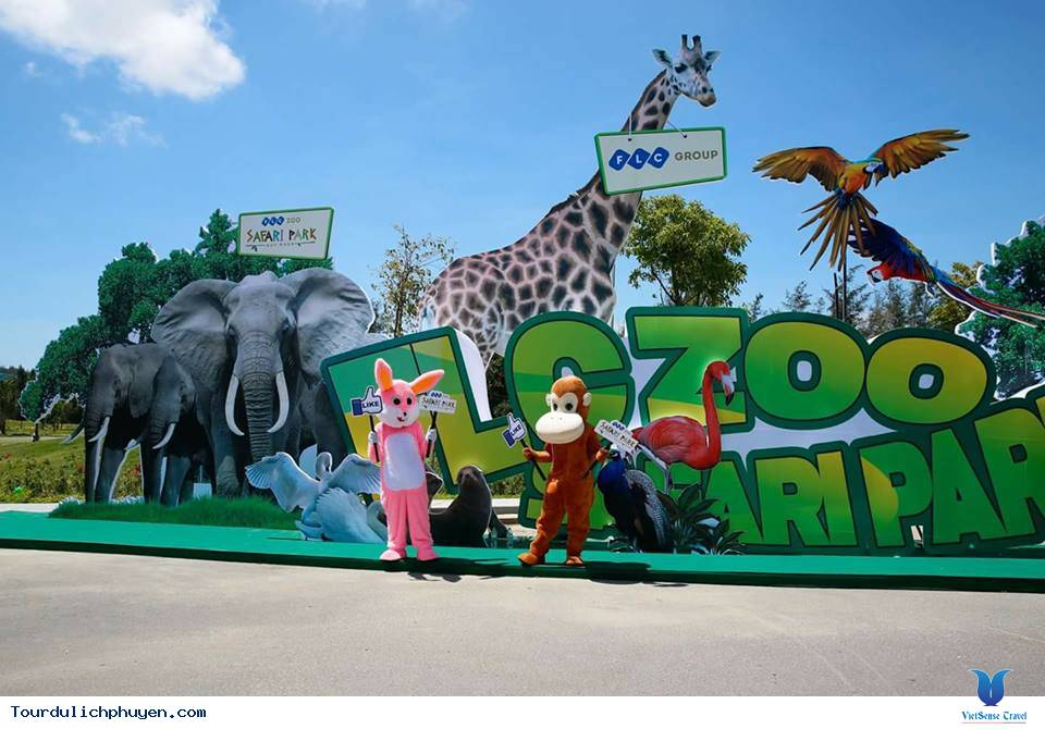 Safari Park - Điểm Đến Mới Cho Chuyến Đi Khám Phá Quy Nhơn