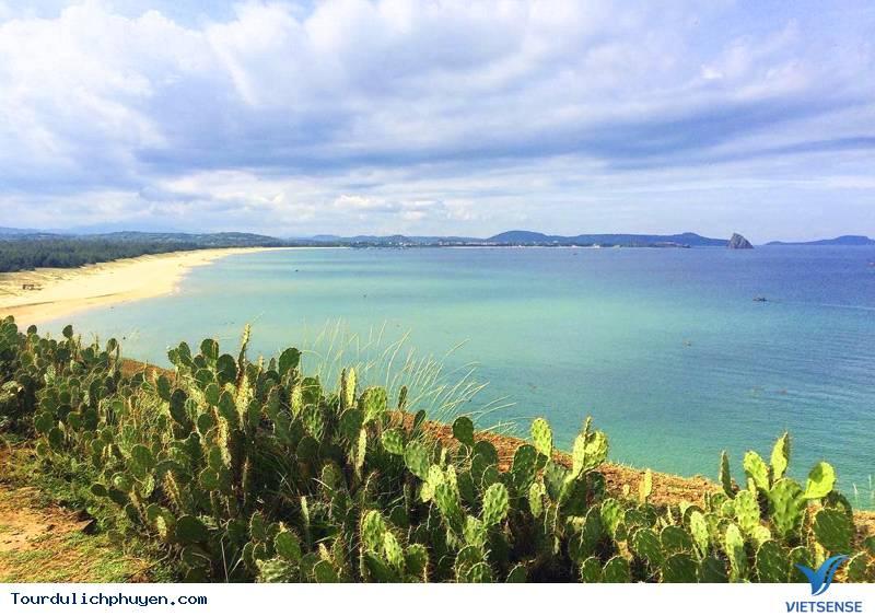 Vẻ đẹp của bãi xép Phú Yên - Ảnh 2